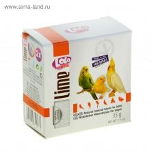 Мінеральний камінь LoLo Pets Lime Mineral block for birds - Apple з яблуком для птахів 35г.